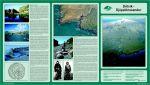 Dritvík - Djúpalónssandur